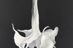Trumpet Flower 1